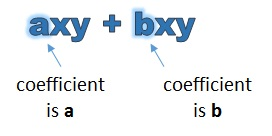 a x y has a coefficient of a, b x y has a coefficient of b